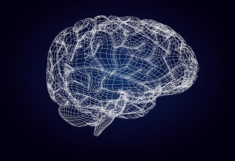 脑能量NMN